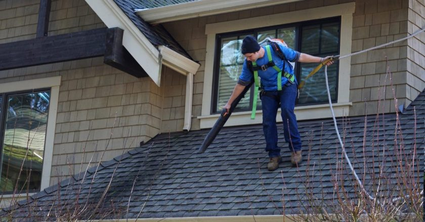 It Is Everything About Regional Roof Covering Business Toronto